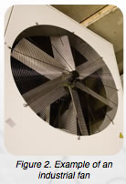Fan with Blades